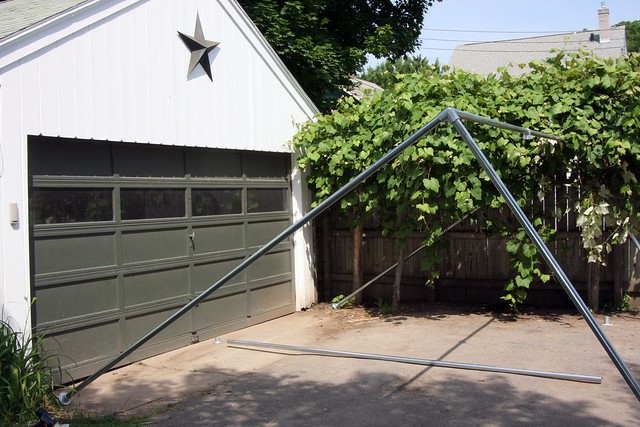 Backyard Grape Vine Trellis - Pipe & Wire