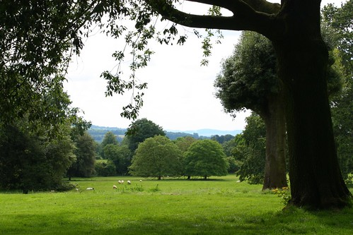 Pastoral View at Hidcote