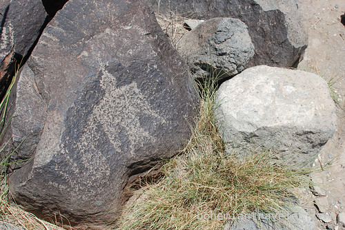 petroglyphs at three rivers Site New Mexico (8)