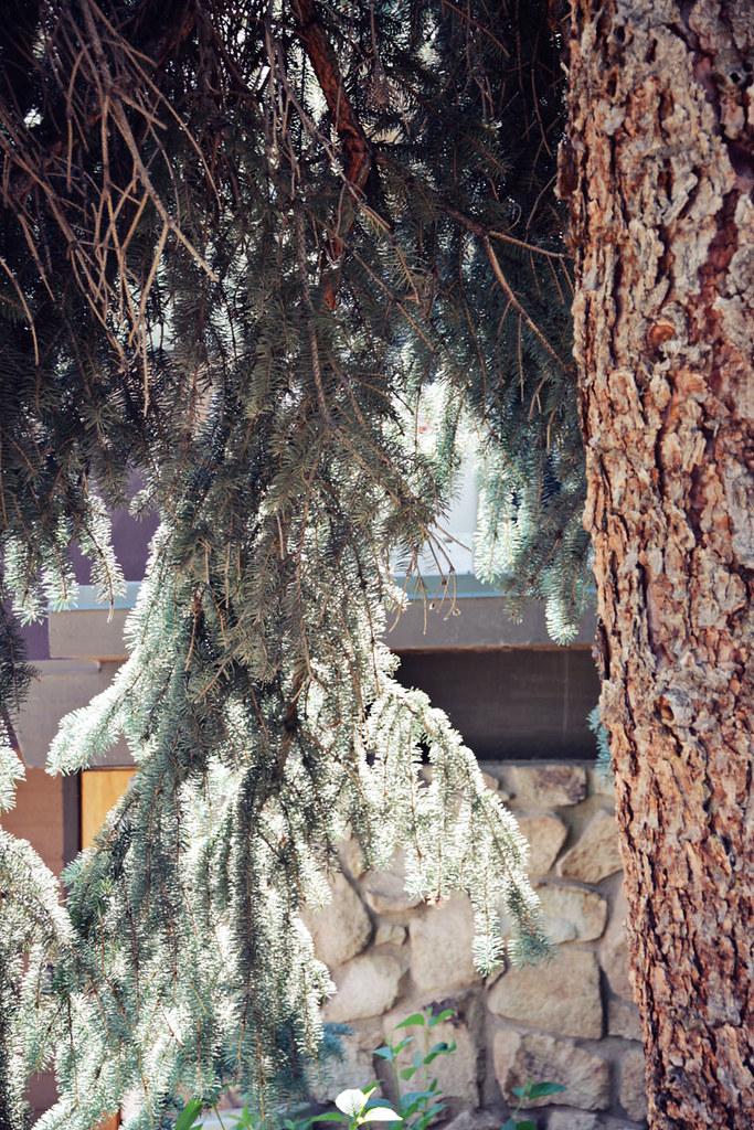 Snowmass Village 11