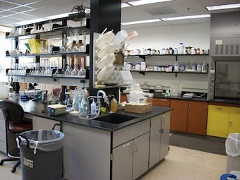 Forest Soils Lab