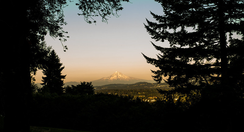 Mt. Hood from Terwilliger