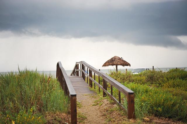 beachbride_8846