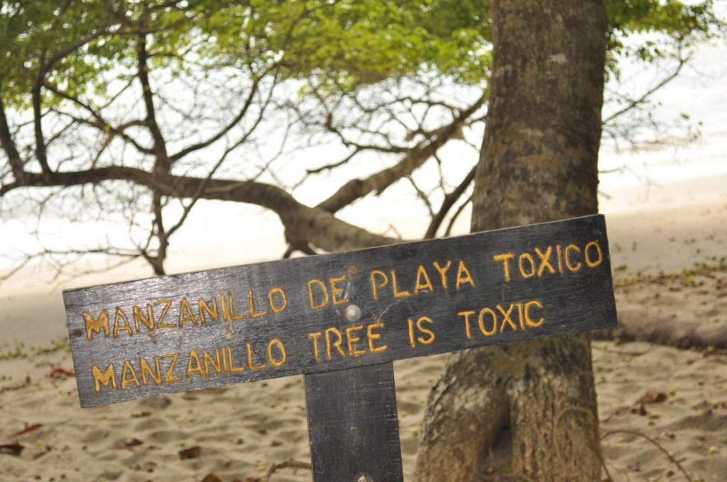 Parque Nacional de Manuel Antonio en Costa Rica Parque Nacional Manuel Antonio en Costa Rica, el más pequeño y más popular - 7734683930 04fd956b2b o - Parque Nacional Manuel Antonio en Costa Rica, el más pequeño y más popular