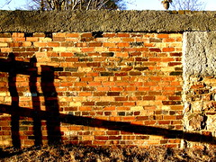 Late afternoon sun on brick wall.
