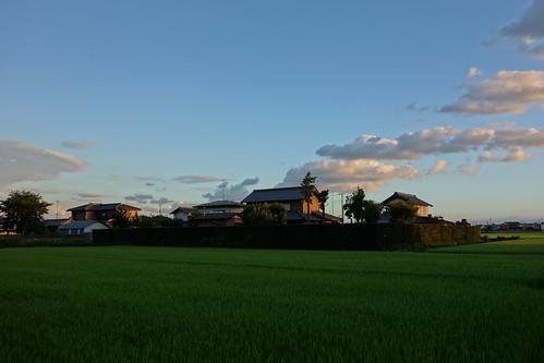 秋の空と田んぼと家