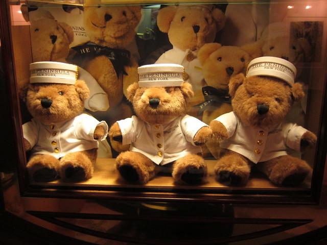 Peninsula bears