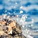 Splash by JoGo...