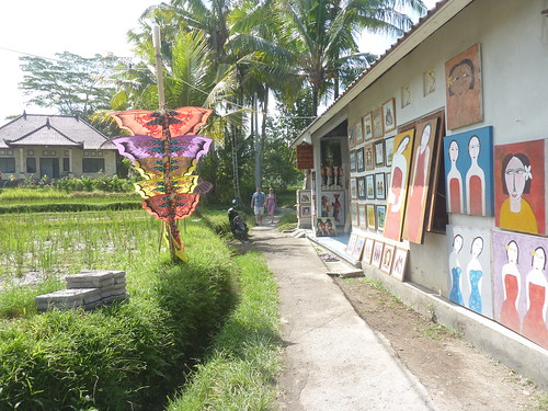 Bali- Ubud-Rizières (6)