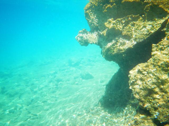 Underwater Adriatic Sea (6)