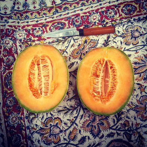 Homegrown cantaloupe, a blanket, a knife. Simple, good things gettin' me by.