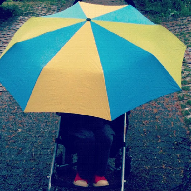 umbrella and stroller...