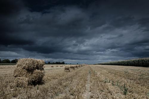 Bottes de paille sous un ciel orageux Paysage Désat1