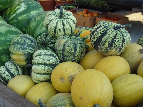 Petersburg Farmers Market July 28, 2012 (32)