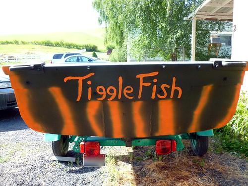 Tiggle Fish