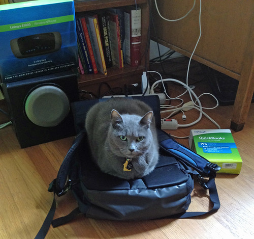 morty appropriates bag.jpg