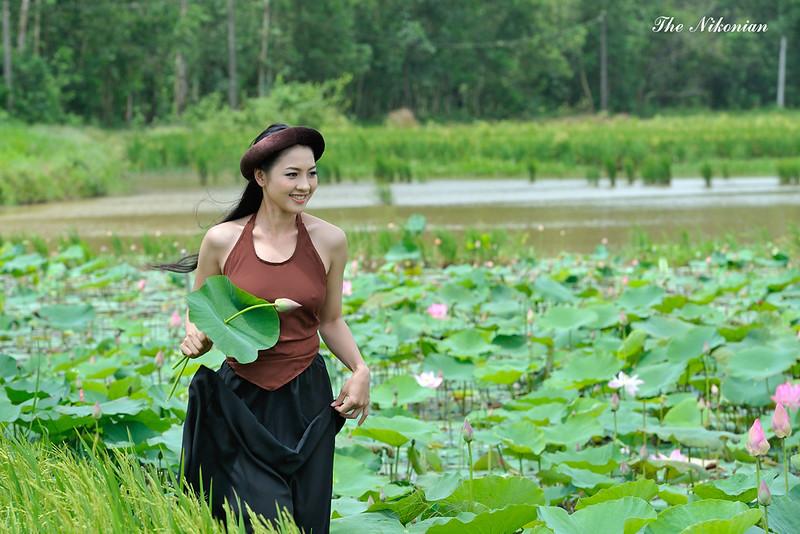 thai nha van