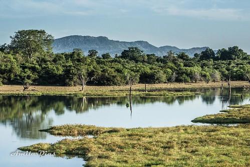 Wasgamuwa Park