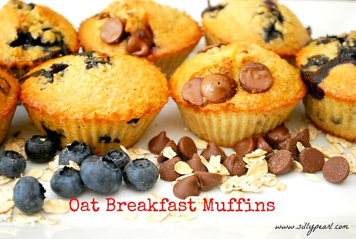 Multiples in the Kitchen Oat Breakfast Muffins