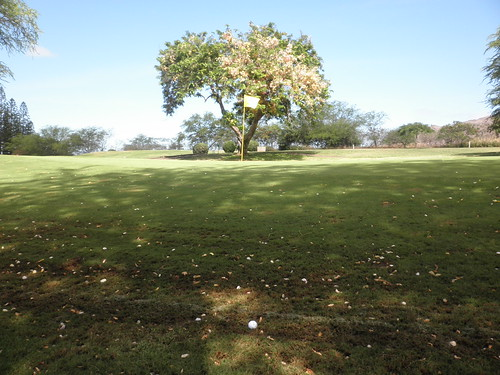 Makaha Valley Country Club 027