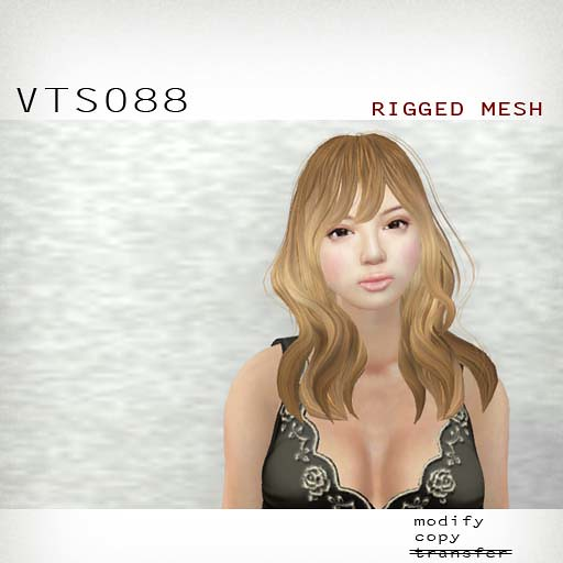 booN VTS088 hair