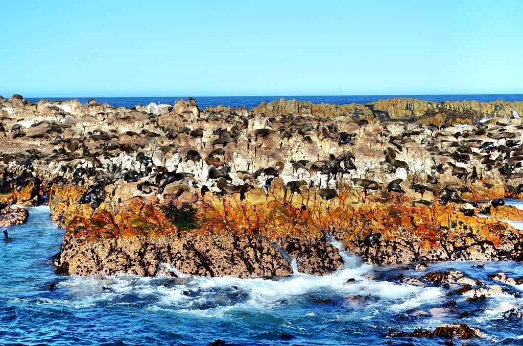 Geyser Rock South Africa