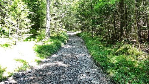 Weg-zur-Brunnsteinhuette
