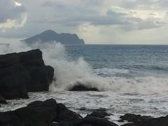 對於颱風,或許可以更正面看待。水試所研究指出,對於生態以及環境,颱風有其必要性。