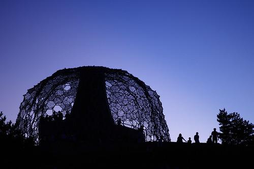 Dome, like a tree