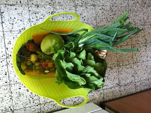 Basket of veggies, delivery -- a lot for one person