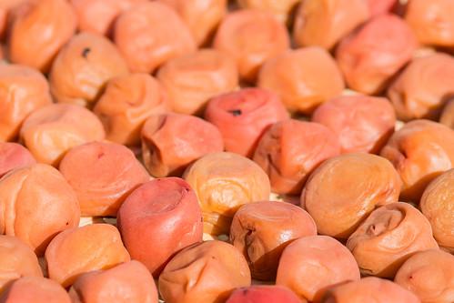 Homemade pickled plum (Ume-Boshi)
