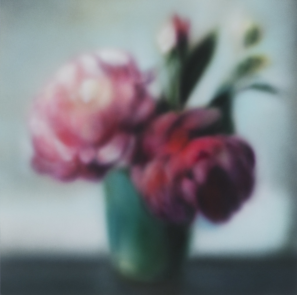 2012_Flowers_From_Above.jpg