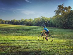 Bluemont Park, Arlington Virginia 8:14 a.m. 8/16/16
