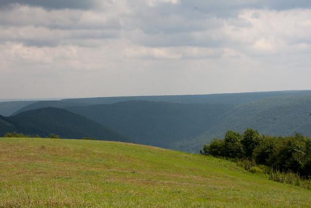 Elk State Forest