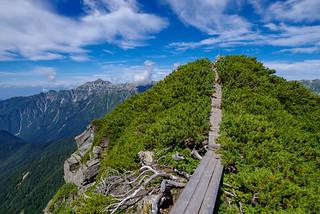 登り返したヤセ尾根の木道