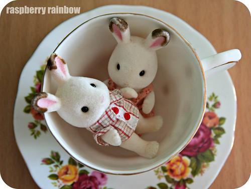 Bunnies hiding