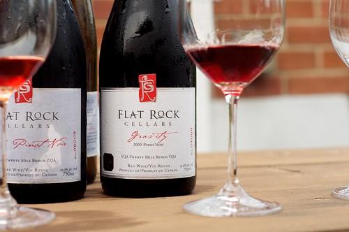 2005 Flat Rock Gravity Pinot Noir