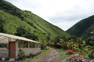 Ecuador-coffee-farm-images