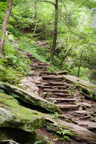 096 stairs to waterfall at ricketts glen july 2012