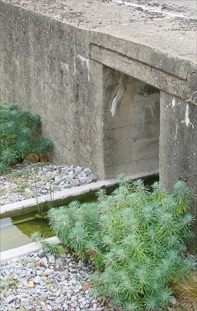 le jardin des orpins et des gramin es estuaire st nazair flickr photo sharing. Black Bedroom Furniture Sets. Home Design Ideas