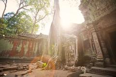 [免费图片素材] 建筑物, 宗教建筑, 遺跡, 吴哥窟, 景观 - 柬埔寨, 寺庙, 世界遗产, 镜头光晕 ID:201208121200