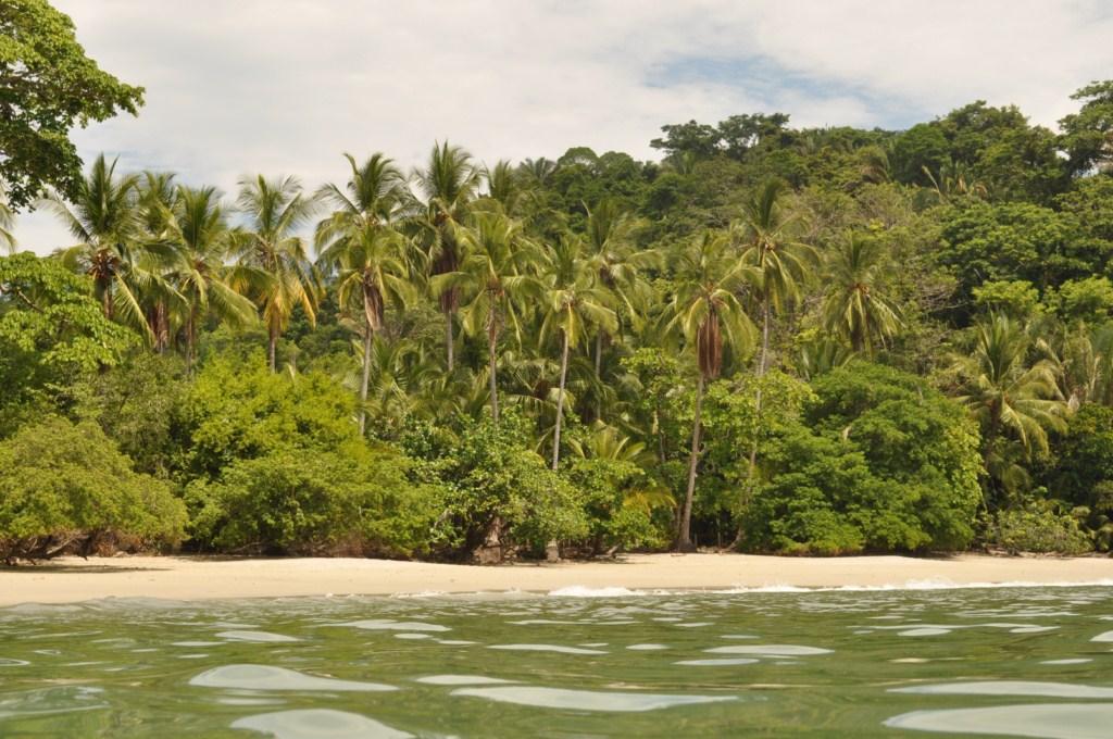 Playas del Parque Nacional de Manuel Antonio en Costa Rica Parque Nacional Manuel Antonio en Costa Rica, el más pequeño y más popular - 7734666532 367f546ff9 o - Parque Nacional Manuel Antonio en Costa Rica, el más pequeño y más popular