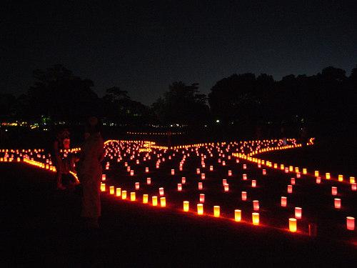 なら燈花会2012-11