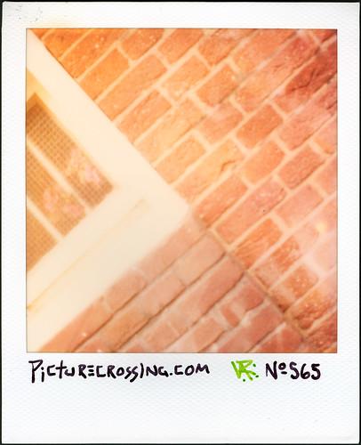 PX No.565 by LANCEPHOTO