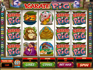 Karate Pig Slot Machine