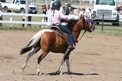 animal sports, rodeo, equestrianism, english riding, mare, equestrian sport, sports, equitation, horse,