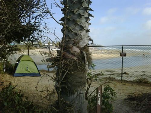 Campsite #64