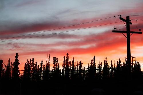 trees sunset red orange 365daychallenge flickraward canoneos7d