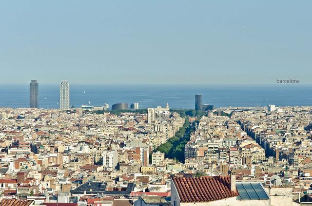 315/366: barcelona