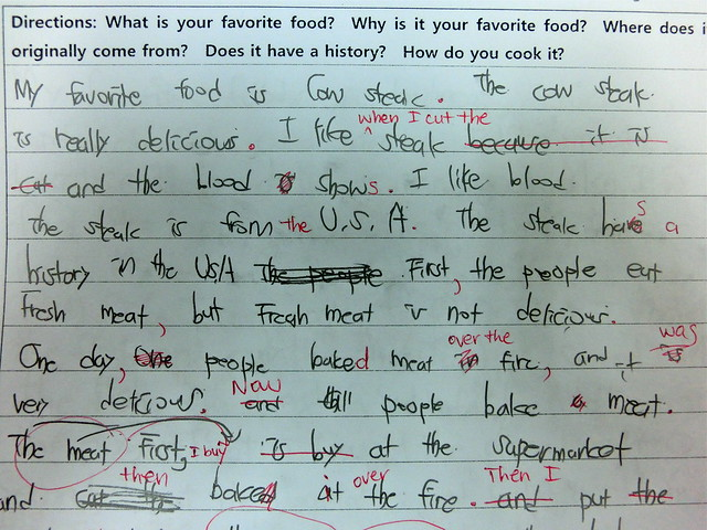 the engrish edition i like blood engrish essay ahout favourite foods